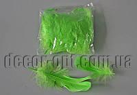 Перья салатовые 5-15 см 100 шт