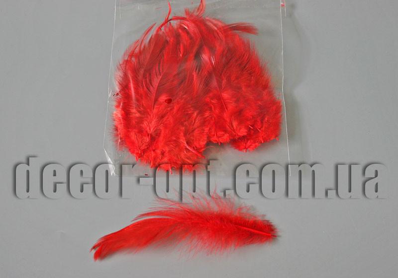 Перья красные 5-14см 50шт