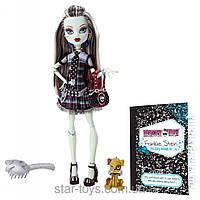 Кукла Monster High Frankie Stein Basic Монстер Хай Френки Штейн с питомцем