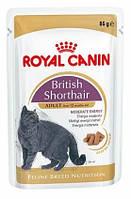 Влажный корм Royal Canin (Роял Канин) British Shorthair adult для британских котов старше 1 года 85 г