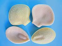 """Молд и вайнер """"Орхидея фаленопсис"""" (р-р 7 х 6,5 и 4.5 х 6,5 см)"""