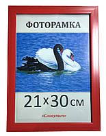 Фоторамка,пластиковая,А4,21х30, рамка,для фото, дипломов,сертификатов, грамот, вышивок 2216-58