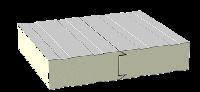 Сэндвич-панели из пенополиуретан для строительства холодильных и морозильных камер ( толщина от 40мм до 200мм)