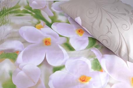 Двуспальное постельное белье (AN201/209), фото 2