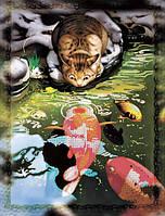 Вышивка бисером картины Идейка Кот и карпы кои (ВБ1048) 30 х 40 см