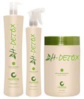 H-Detox (Глубокая очистка кожи головы и восстановление волос) Honma Tokyo набор
