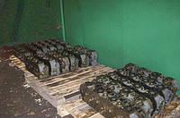 Головка блока цилиндров ДТ-75  А-41 в сборе 43-06С9