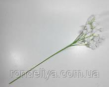 Веточка с белыми цветочками