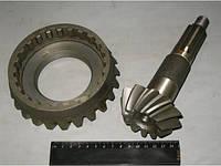 Комплект шестерен (глав. пара) ПВМ МТЗ-82 (пр-во МТЗ)