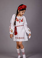 Вышитое платье для девочки с уникальным орнаментом
