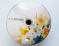 DVD+R LS-Media, Нарциссы, х16, bulk-50