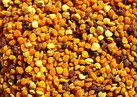 Цветочная пыльца , Квітковий пилок (пчелиная обножка)