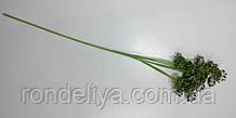 Гілочка з суцвіттям зелена