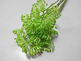 Гілочка з суцвіттям салатна, фото 2