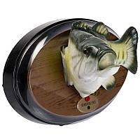 """Сувенир - поющая и танцующая рыба """"Весёлый карп"""""""