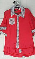 """Детская блузка-рубашка """"Горошек воротник"""""""