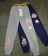 Штаны спортивные на девочку 116-146 см