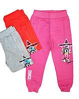 Штаны спортивные для девочек трикотажные, Grace, размеры 98,104, арт. G-60392