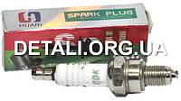 Свеча зажигания Sail L66mm резьба d10 (узкая, длинная)