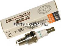Свеча зажигания INT H-CMR6 L55mm резьба M10*1 12.7mm