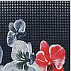 Трикотажная ткань кулир опен-енд халатный 100% хлопок набивной