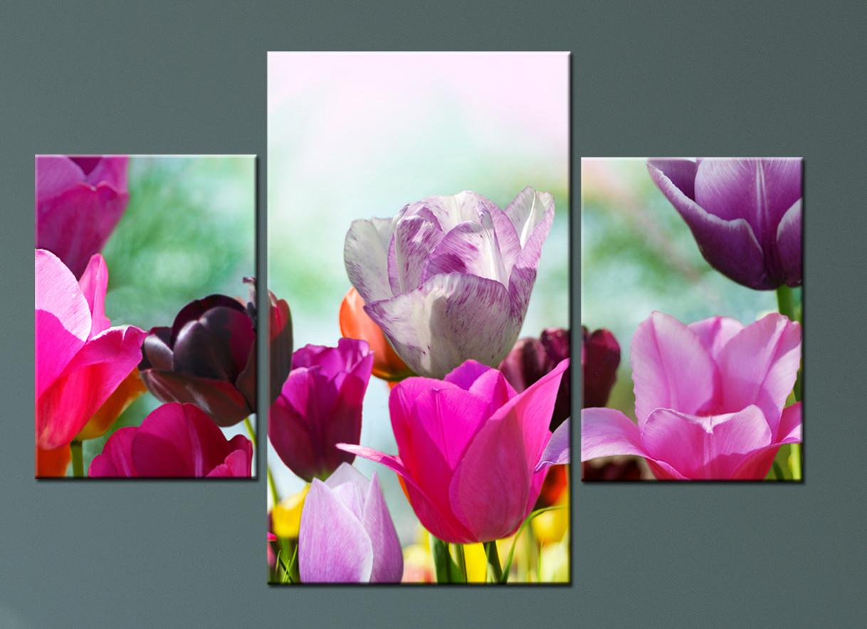 Модульная картина Яркие тюльпаны