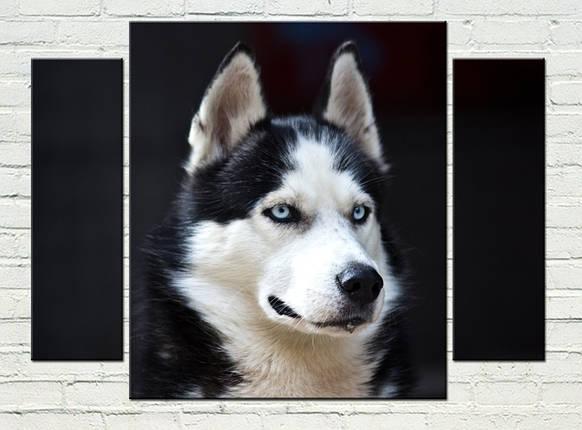 """Модульная картина """"Верный пес"""", фото 2"""