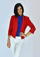 Красивый пиджак модного фасона