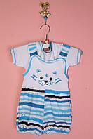 Детский комплект из футболки и песочника «Полосатик»