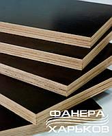 Фанера  ламинированная гладкая, формат 2500х1250, сорт F/F, толщина 24 мм