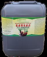 ЭМ-1 Байкал - 10 литров