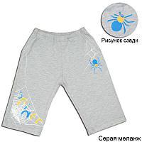 """Детские трикотажные шорты для мальчика """"ПАУК"""""""