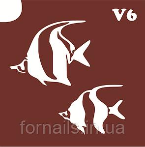 Трафарет для биотату №V6