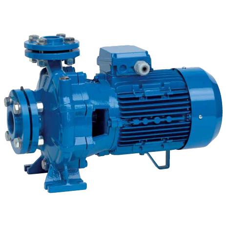 Промышленный насос SPERONI CS 80-160A