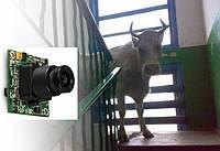 Установка видеокамеры наблюдения в подъезде