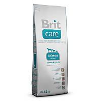 Brit Care GF Adult Salmon & Potato - сухой корм для взрослых собак весом до 25 кг