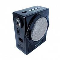 Радиоприемник с фонарем GOLON RX-129,электроника, аудиотехника, проигрыватель аудиофайлов с usb-flash / sd
