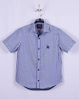 Рубашка для мальчика (с коротким рукавом) ТМ Bogi