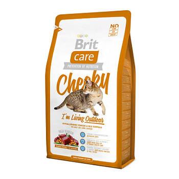 Сухой корм Brit Care Cat Cheeky с олениной и рисом для кошек живущих на улице, 2 кг