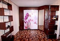 Шкаф-кровать с фотопечатью , фото 1