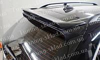 Спойлер Bmw X5 E70 (спойлер на крышку багажника БМВ Х5 Е70)