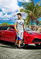 Мужской спортивный костюм BMW шорты с футболкой
