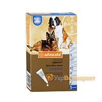 Advocate (Адвокат) капли на холку от блох и клещей для собак от 25 до 40 кг, 1 пип. по 4 мл, Bayer