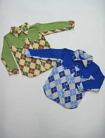 Акция 1+1. Рубашка для мальчика, интерлок. р.р.24-34.