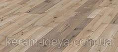 Ламинат Kaindl Natural Touch Standard Plank Oak FARCO TREND K4361
