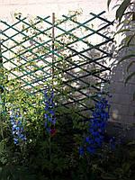 Шпалера садова пластикова декоративна решітка пергола з доставкою по Україні, фото 1