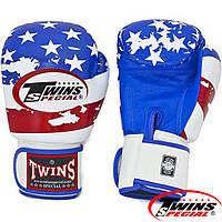 Боксерские перчатки  USA Flag Premium Leather BG FBGV 44US