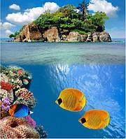 Плитка Море Остров Рыбы, УФ на кафеле, плитка 20х30см.