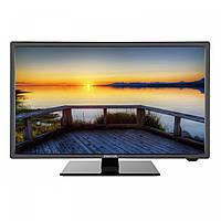 Телевизор Manta LED 1903 (50Гц, HD)