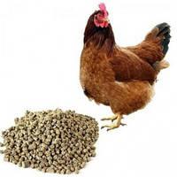 Комбикорм для кур-несушек Наша ферма мешок 20, 40 кг